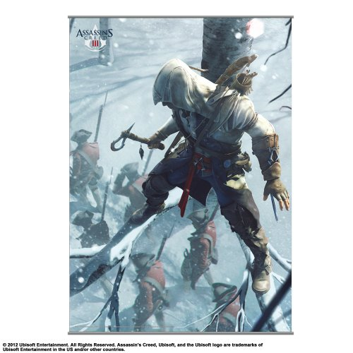 Square Enix - Wall Scroll Assassin's Creed III Vol.2