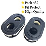 HEYZLASS (Pack of 2) 593260 798452 Air Filter Cartridge for...