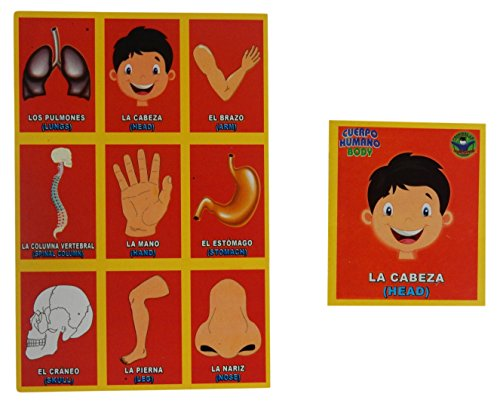 Prodidac Jr Human Body Bingo Game for Kids/Loteria del Cuerpo
