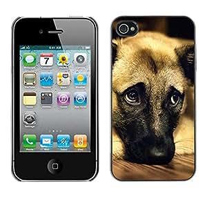 PC/Aluminum Funda Carcasa protectora para Apple Iphone 4 / 4S German Shepherd Dog Anatolian Pet / JUSTGO PHONE PROTECTOR
