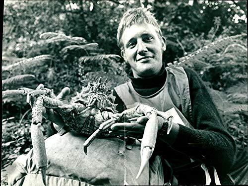Vintage photo of Stephen Seymour Holding a spider crab which he had to cook.