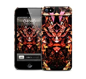 Abstract Design iPhone 5 / 5S protective case