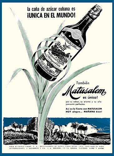Rum Matusalem - 18