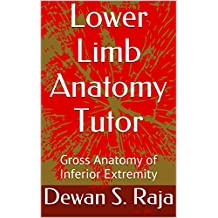 Lower Limb Anatomy Tutor: Gross Anatomy of Inferior Extremity