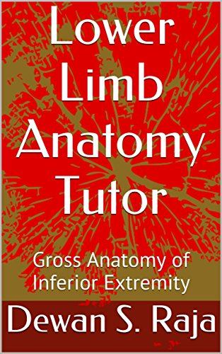 Lower Limb Anatomy Tutor: Gross Anatomy of Inferior Extremity