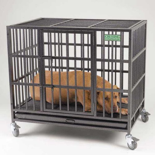 Cruising Companion Empire II Pet Cage, Medium, Graphite