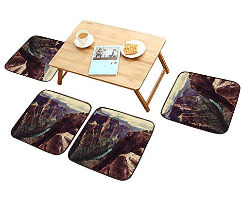 HuaWu-home Modern Chair Cushions Picturesque Landscapes of The Grand Canyon Convenient Safety and Hygiene W23.5 x L23.5/4PCS Set ()