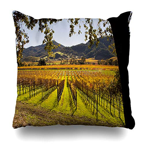 Ahawoso Throw Pillow Cover Valley Vineyard Napa Autumn Food Drink Nature Green California Sonoma Fall Grapes Design France Decorative Pillow Case 18x18 Inches Square Home Decor Pillowcase (Sonoma Vineyards Merlot)