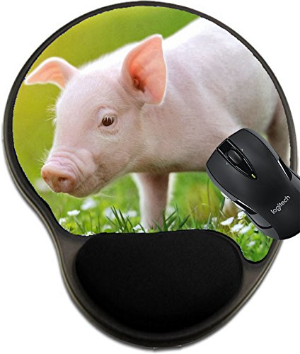 MSD Mousepad wrist protected Mouse Pads/Mat with wrist support Young pig on a spring green grass Image 37376555 Customized Tablemats Stain Resistance Collector Kit Kitchen Table Top DeskDrink Customi