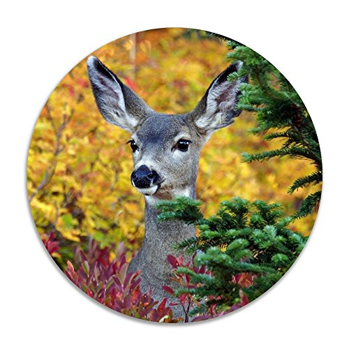 Reteone Animals Tree Deer Forest Leaf Anti-slip Coral Velvet Round Area Rugs Memory Foam Floor Carpets Mats 15.75 Inch Diameter Bedroom Rug Yoga Chair Mat Doormat (Rugs Edmonton Ikea)