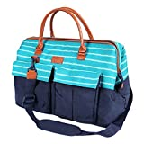 Arctic Zone 1523AMPR0431 Insulated Picnic Carrier, Teal