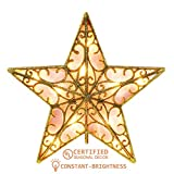YUNLIGHTS 9 Inch Lighted Star Tree Topper, Gold Glittered Vintage Christmas Tree Toppers with Clip for Indoor Christmas Ornaments Party Home Decoration, Warm White