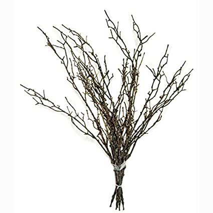 Lovely Amazon.com: FloristryWarehouse Artificial Brown Twig Bundle 5 x  AS05