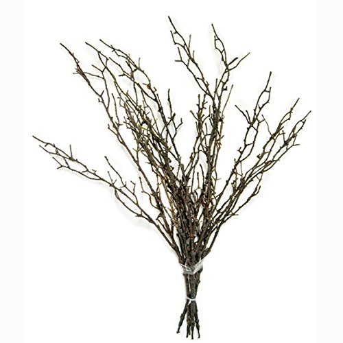 FloristryWarehouse Artificial Brown Twig Bundle 5 x 65cm/25.5 Inch Stems