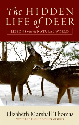 The Hidden Life of Deer: Lessons from the Natural World cover