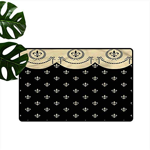 DUCKIL Interior Door mat French Fleur de Lis Royal Ancient Super Absorbent mud W30 ()