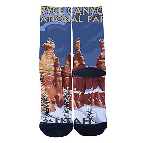 Mens Womens Casual Bryce National Park Utah Winter Scene POSTER Socks Crazy Custom Socks Creative Personality Crew Socks Black -