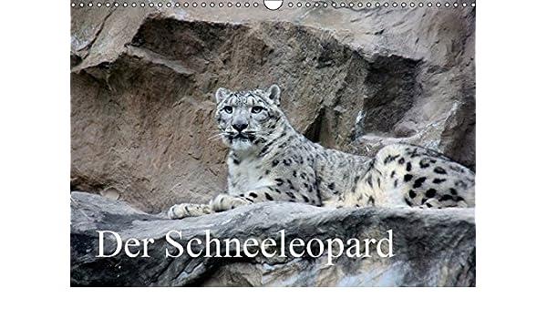 Amazon Com Der Schneeleopard Die Perfekte Raubkatze Fur Das