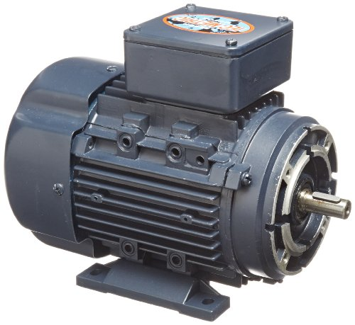 Leeson 192037.00 Rigid Base IEC Metric Motor, 3 Phase, D71C Frame, B3/B14 Mounting, 0.5HP, 3600 RPM, 230/460V Voltage, 60/50Hz Fequency by Leeson