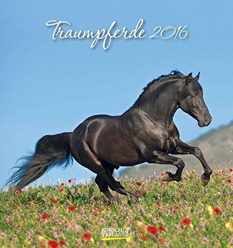 Traumpferde 2016: aufstellbarer Postkartenkalender