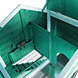 Petsfit 42 5 X 30 X 46 Inches Bunny Cages Outdoor Rabbit Hutch