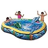 Banzai 3D Dolphin Lagoon Pool - Best Reviews Guide
