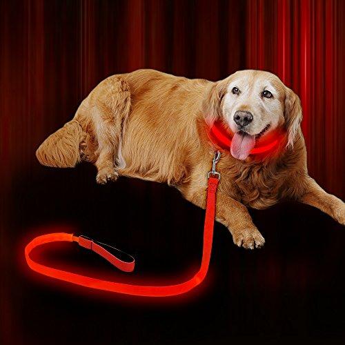 Dog House Leash Hook (Illumifun LED Dog Leash USB Rechargeable 47.2inch Nylon Webbing 3 flash Modes,Safety Reflective Dog Leash LED,Glowing Dog Leash Dark Visible (Red))