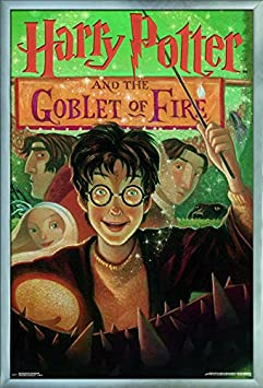 Trends International 24×36 Harry Potter and The Goblet of Fire Wall Poster 25.8 x 37.8 x 1 Multicolor