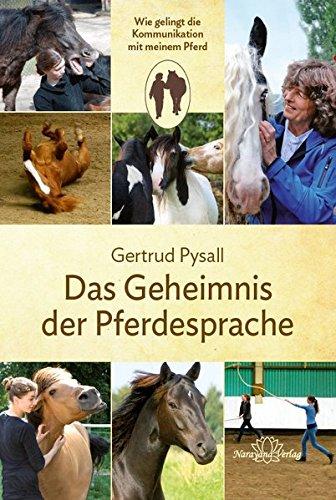 Das Geheimnis der Pferdesprache: Wie gelingt die Kommunikation mit meinem Pferd