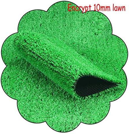 XEWNEG 10mmグリーン人工芝、暗号化された防水ノンフェード、カット可能、ペットカーペットフェイク芝生マット、庭の屋外の都市壁の装飾のため、幅2m (Size : 2×10m)