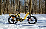 VeeGo Folding Fat Tire Electric Bicycle with a 500W Bafang Hub Motor and Heavy Duty Cargo Rack, Free LCD Computer w/ USB for Pre-Orders