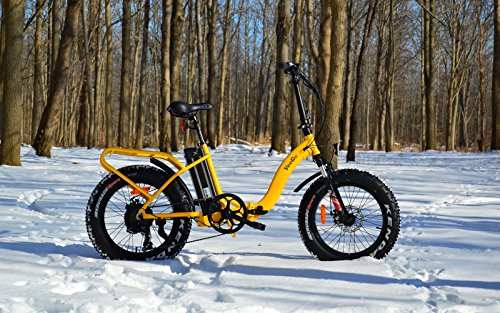 Ride Scoozy Veego 750 Watt Electric Bicycle 28 Mph Class