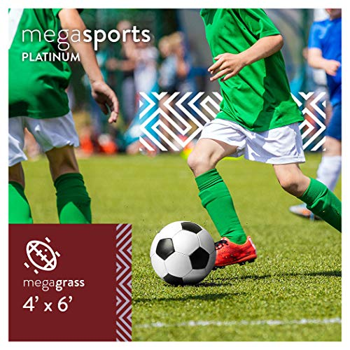MEGAGRASS Popular Size 4 x 6 Feet Sport Platinum - Indoor and Outdoor Artificial Grass for Sports and Agility Training and Synthetic Fake Sports Turf Rug, 24 Square Ft
