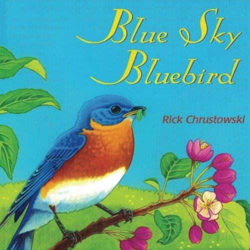 Blue Sky Bluebird