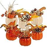 winemana Thanksgiving Decorations Set of 6