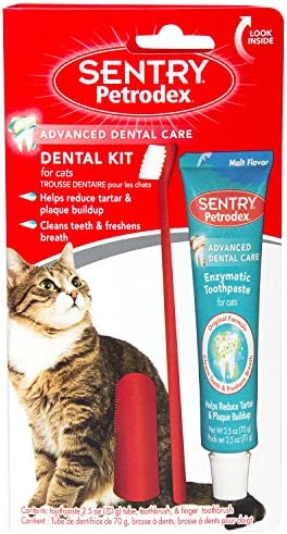 SENTRY petrodex Dental Kit para Gatos, Malta Pasta de Dientes, 2,5 oz: Amazon.es: Productos para mascotas
