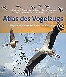 Atlas des Vogelzugs: Ringfunde deutscher Brut- und Gastvögel