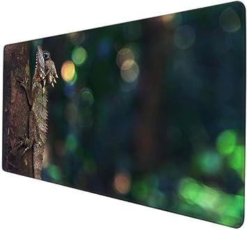 Protector Mesa Escritorio Camaleón Lagarto Mascota Animal ...