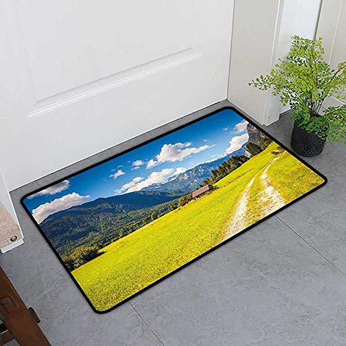 TableCovers&Home Pet Mat Machine Washable, Nature Doormats for Living Room, Julian Alps Mountain Valle Rural with Wooden Country House Paradise Picture (Lime Green Sky Blue, H32 x ()