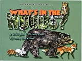 img - for What's In the Woods?: A Great Lakes Area Treasure Hunt book / textbook / text book