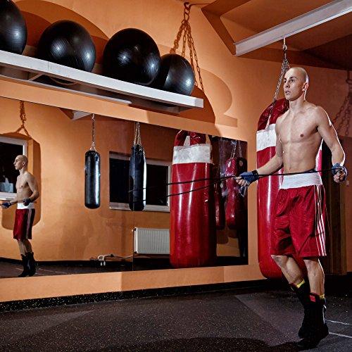 "413PQZzyXhL Troy System Rectangle Mira Safe Gym Mirror Kit, 1/4"" Thick Single Pack, 72"" L x 36"" L"