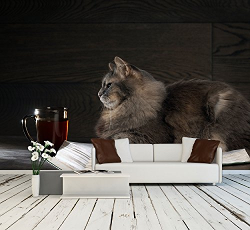 Gray Big Cat Lies on the Open Book Nearby Stands a Cup of Tea or Coffee