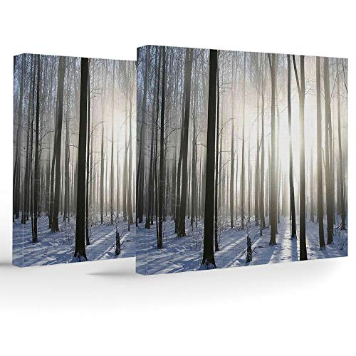 iPrint Birthday Decorations,Woodland Decor,Modern Stretched and Framed Artwork,Wintertime Forest on a December Morning Snowy Sunshine Shadows Trunk ()