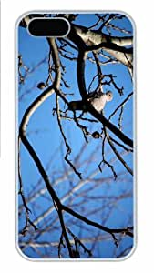 iPhone 5S Case - Customized Unique Design Lonely Pigeon New Fashion PC White Hard