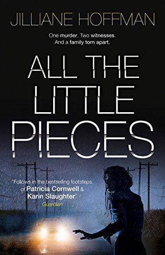 Read Online All the Little Pieces ebook