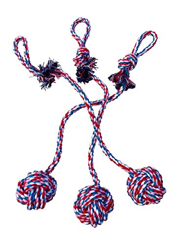 Rope Toys small medium dogs product image