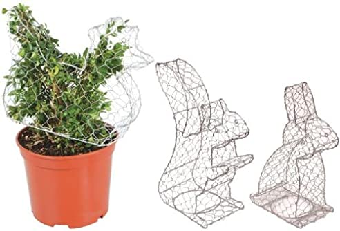 Figuren Aus Draht Selber Machen esschert design buchsfiguren set aus zink draht buchsbaum figuren