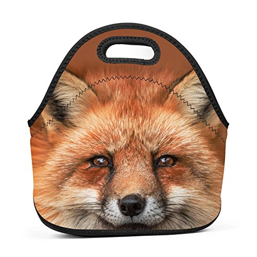 Brniogn Funny Foxes Glance Lunch Bag for Adult Women and Men - Idea for Beach, Picnics, Road Trip, Meal Prep, Everyday Lunch to Work or School (Adult Pigment Funny)