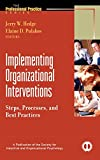 Implementing Organizational Interventions: Steps,Processes, and Best Practices