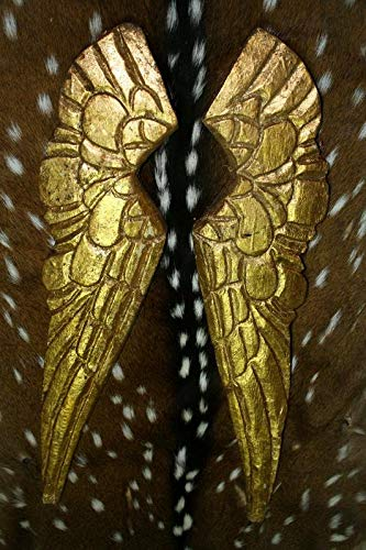 Carved Wooden Antique Style Angel Wings Gold Gilt Leaf Distressed Wood Decor Vintage Cast Iron Supplies for Home Decor by CharmingSS
